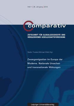 Zwangsmigration im Europa der Moderne. Nationale Ursachen und transnationale Wirkungen von Troebst,  Stefan, Wildt,  Michael