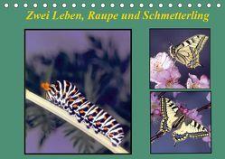 Zwei Leben, Raupe und Schmetterling (Tischkalender 2019 DIN A5 quer) von Reupert,  Lothar