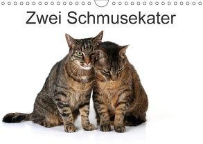Zwei Schmusekater (Wandkalender 2018 DIN A4 quer) von Eppele,  Klaus