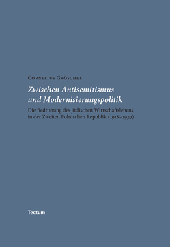 Zwischen Antisemitismus und Modernisierungspolitik von Gröschel,  Cornelius
