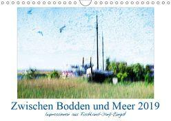 Zwischen Bodden und Meer (Wandkalender 2019 DIN A4 quer) von Wally