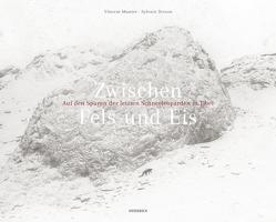 Zwischen Fels und Eis von Denis,  Nicola, Munier,  Vincent, Tesson,  Sylvain