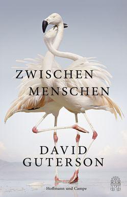 Zwischen Menschen von Deggerich,  Georg, Guterson,  David, Schermer-Rauwolf,  Gerlinde, Weiß,  Robert A.
