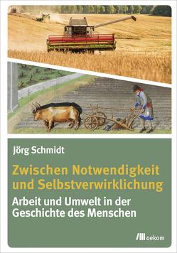 Zwischen Notwendigkeit und Selbstverwirklichung von Schmidt,  Jörg
