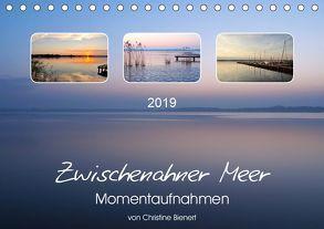 Zwischenahner Meer Momentaufnahmen (Tischkalender 2019 DIN A5 quer) von Bienert,  Christine