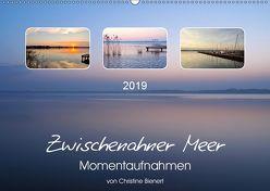 Zwischenahner Meer Momentaufnahmen (Wandkalender 2019 DIN A2 quer) von Bienert,  Christine