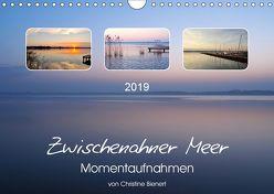 Zwischenahner Meer Momentaufnahmen (Wandkalender 2019 DIN A4 quer) von Bienert,  Christine