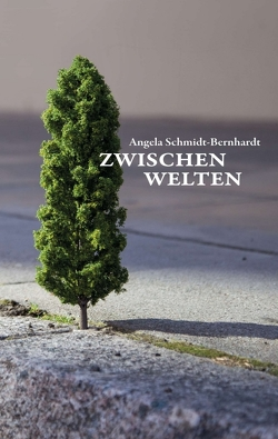 Zwischenwelten von Schmidt-Bernhardt,  Angela